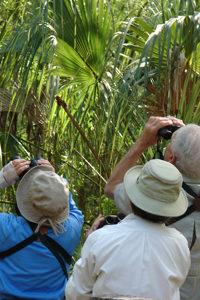 audubon membership
