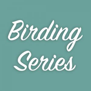 Birding Series