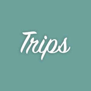 SAS_shopping_image_trips