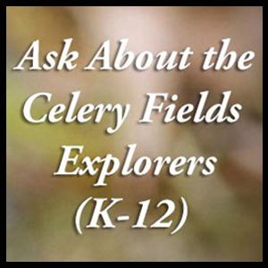 Celery-Fields_300x300