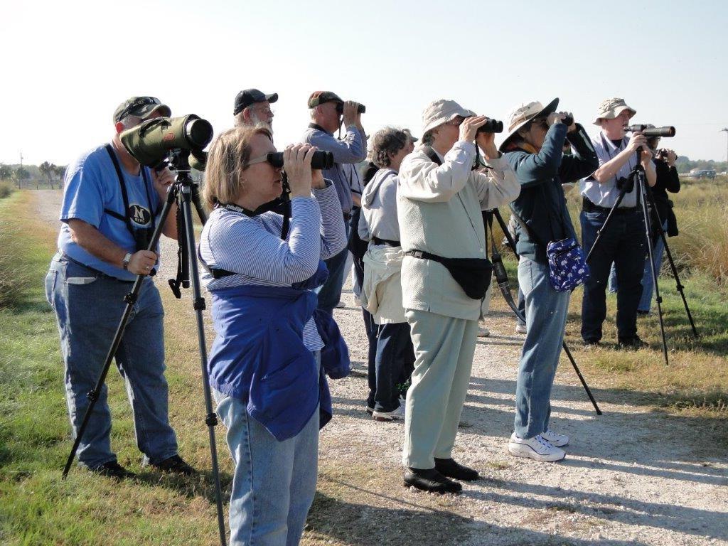 Crowds of people using binoculars image