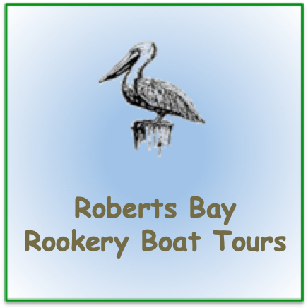 "Stencil pelican image with words ""Robert Bay Rookery Boat Tours"""