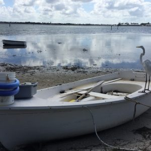 Bird sitting on small boat image