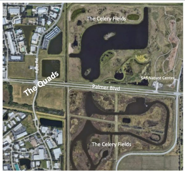 Illustrated image of a new development area